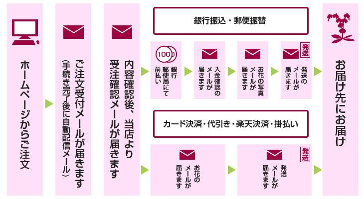 1日でも早く胡蝶蘭を贈りたい方に!即日発送可能な蘭すぐ.net