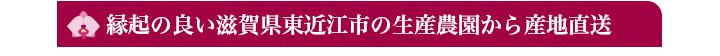 縁起の良い滋賀県東近江市の生産農園から産地直送