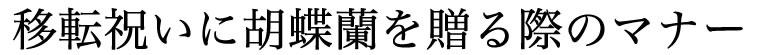移転祝いに胡蝶蘭を贈る際のマナー
