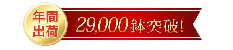 年間出荷29,000鉢突破