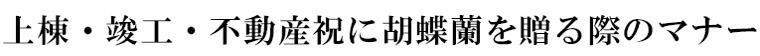 就任・昇進・退職に胡蝶蘭を贈る際のマナー